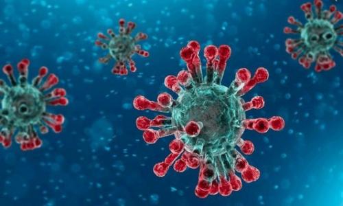 Covid-19, necessario il vaccino ma anche altro per affrontare nuove ondate di contagio